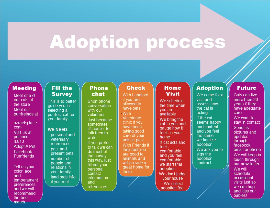 Adoption rev 1