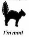tail upset