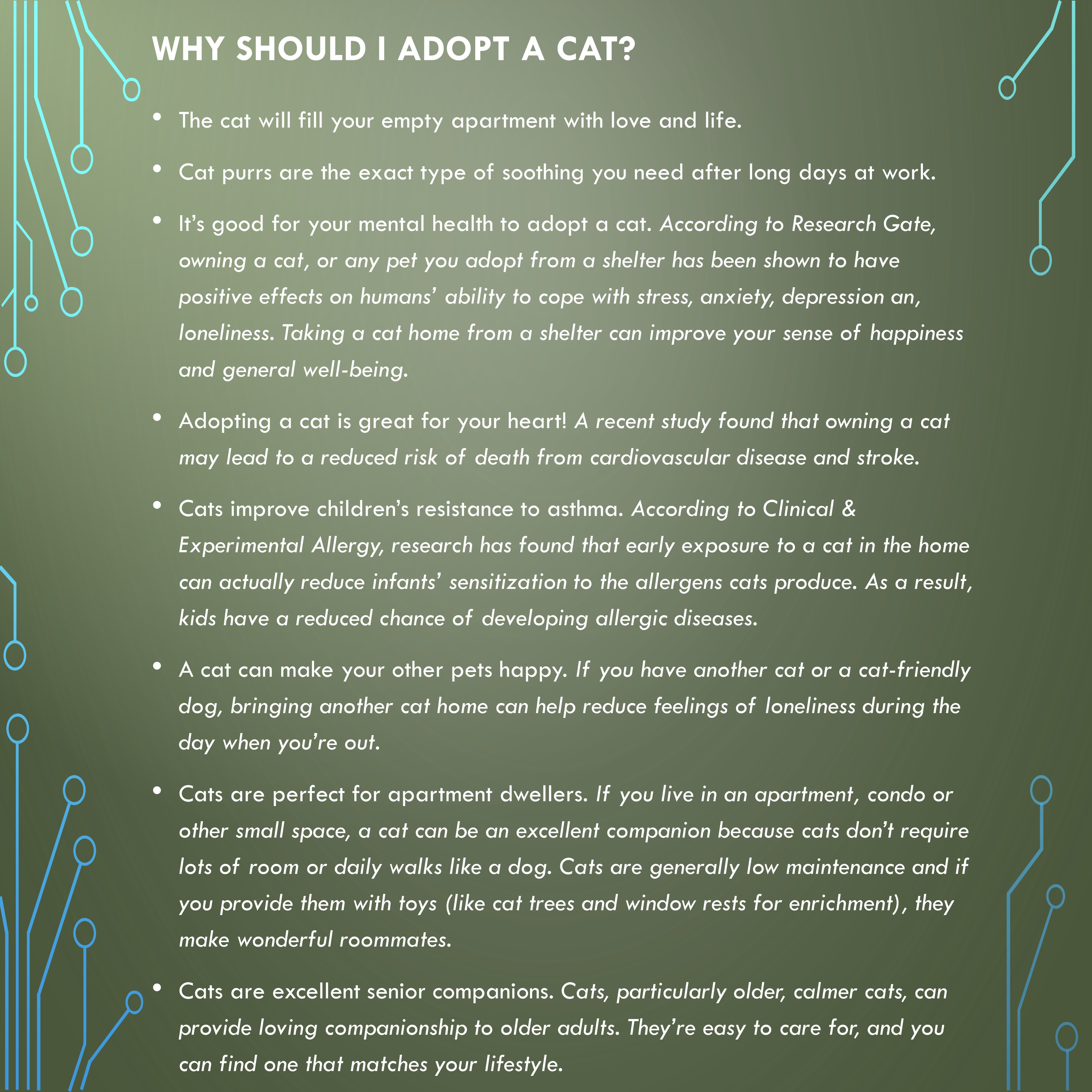 Let us MATCH you! - Azrael's Place ~ where shy cats call home